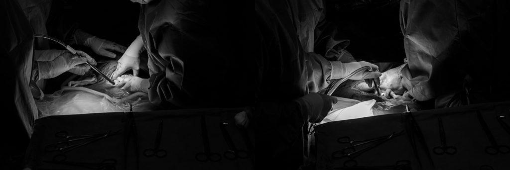 geboorte fotografie limburg, geboortereportage limburg, zwangerschapsfoto limburg, newbornfotograaf limburg